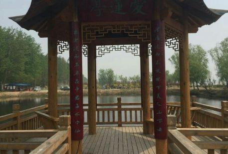 濮陽毛樓生態旅遊區