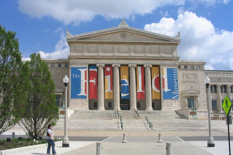 The Field Museum1