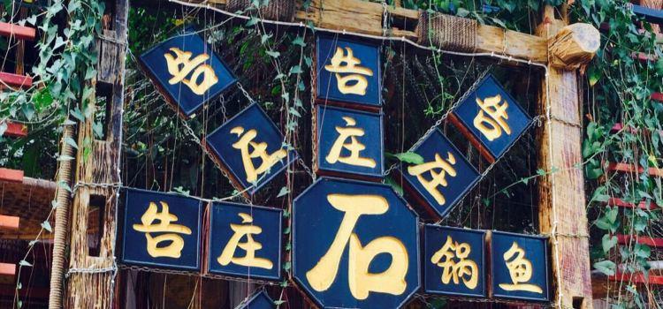 告莊特色海鮮蒸汽石鍋魚(旗艦體驗店)