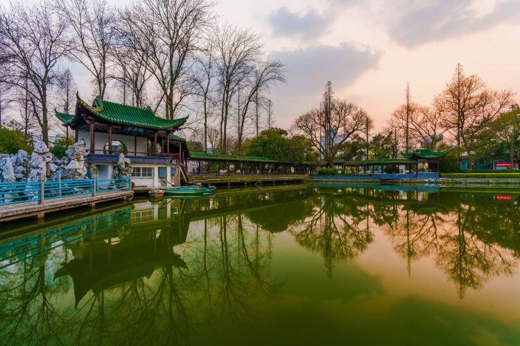 鏡湖公園1