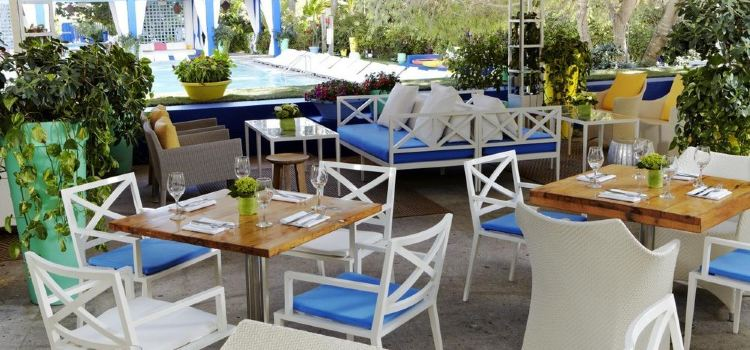 Shore Club Hotel2