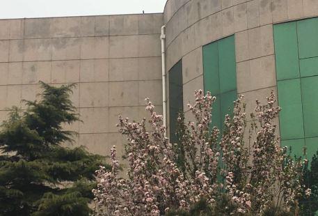 Yingwu Shan Tuozhan Peixun Base