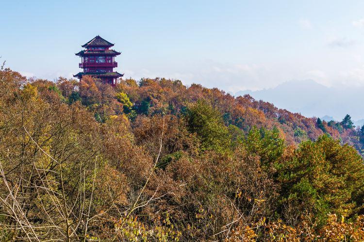Tianzi Mountain3