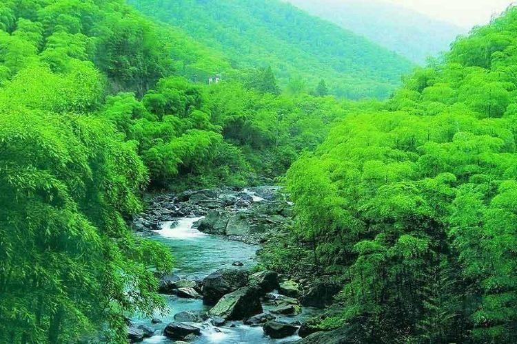Lingjiangyuan Scenic Area1