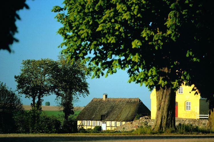 The Funen Village4
