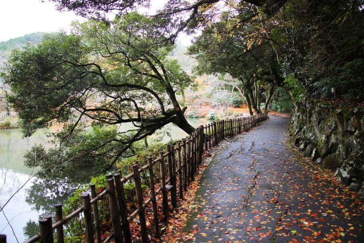 御船山楽園3