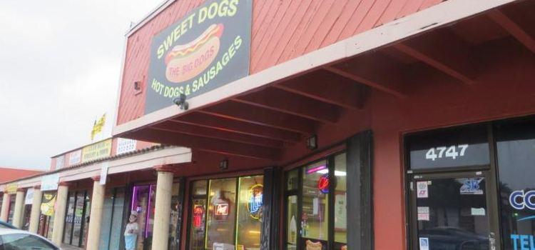 Sweet Dogs 305