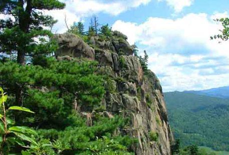 Taoshanguojia Forest Park
