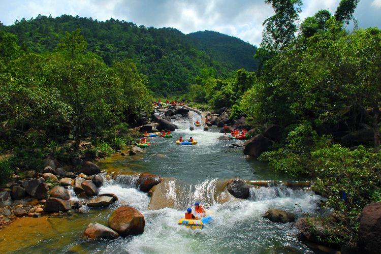 Dongxing Pingfeng Rainforest Park4