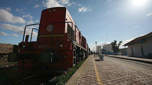 紅蜥蜴列車