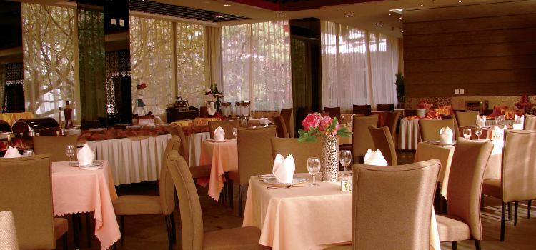 Brasserie Le Sud1