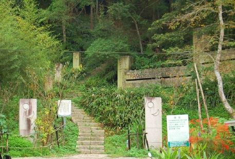 Shuishe Great Mountain Nature Trail