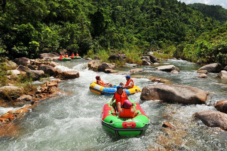 Dongxing Pingfeng Rainforest Park2