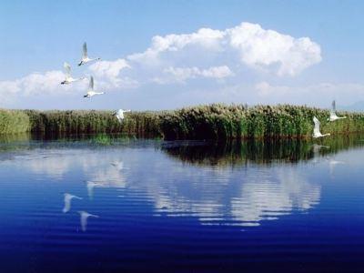 納林湖景區