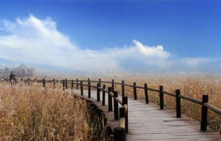 펑황다오 생태관광지1
