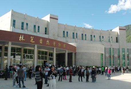 Nyingchi Ziran Museum