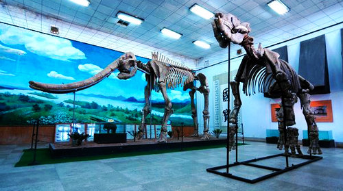 Xunyi Museum
