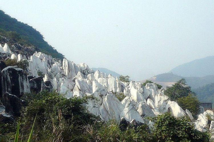 Jade Forest Scenic Area1