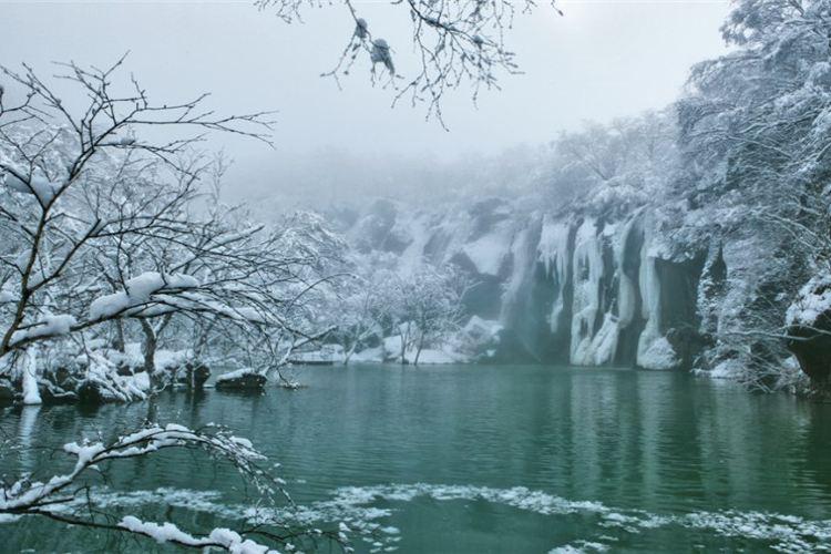 Luyuan Pool