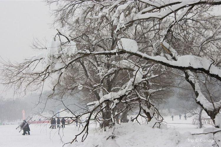 新立湖滑雪場1