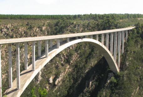 Bloukrans Bridge - World's Highest Bungy