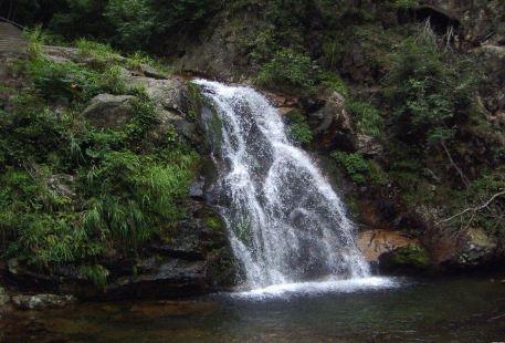 Yangmingshan National Forest Park