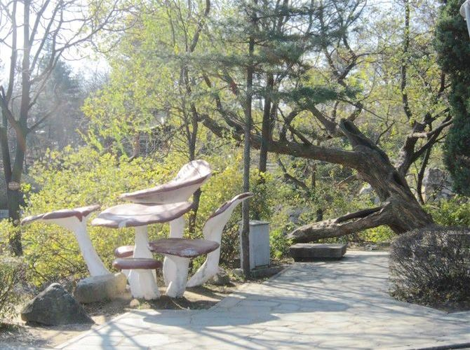 금강산공원