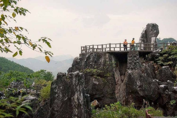 Jade Forest Scenic Area2