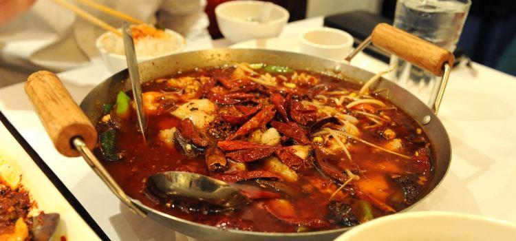 Ollie's Sichuan Restaurant1