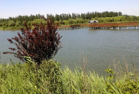Guluanhe Ecology Park