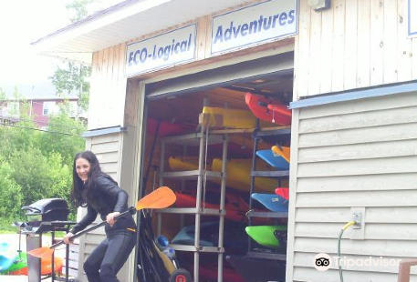 Eco-Logical Adventures