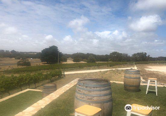 Cape Jaffa Wines4