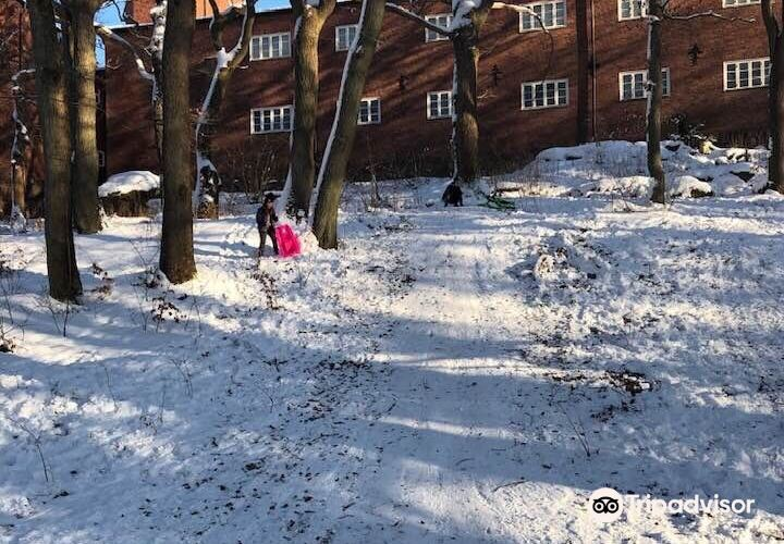 Slottsskogen公園1
