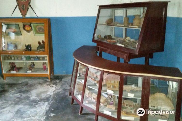 Annapurna Butterfly Museum3