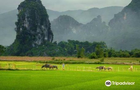 Ngoc Son Ngo Luong Nature Reserve