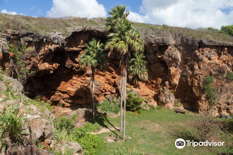 Makauwahi Cave Reserve2