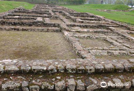 Caerleon Roman Fortress