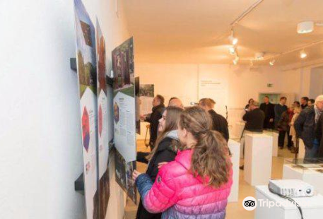 Forma viva Ravne Gallery