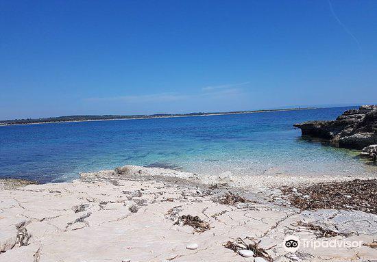 Ceja Island3