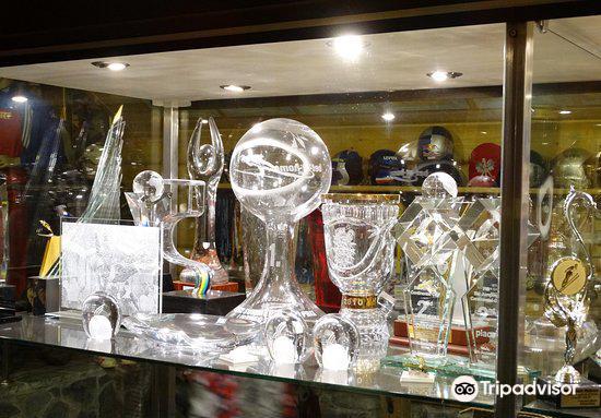 Sports trophies of Adam Malysz