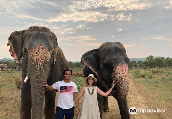 大象奇跡觀光農場1