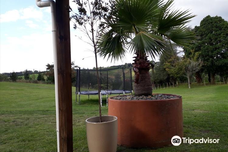 Oropi Hot Pools and Cafe4