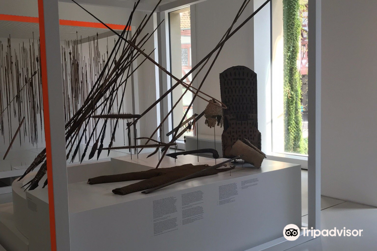 Museum of Cultures3