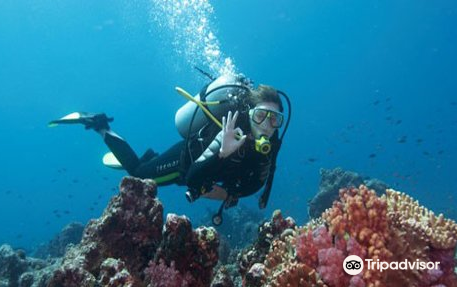 Deep Blue Sea Diving Centre