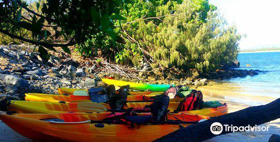 Seaway Kayaking Tours