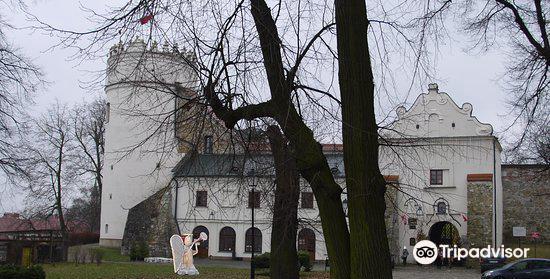 Kazimierzowski Castle4