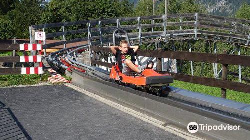 Allgau Coaster