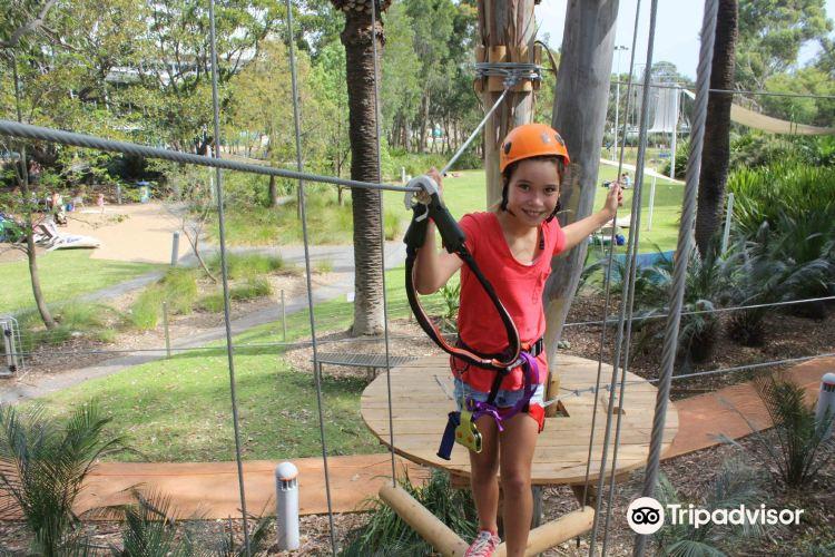 Treetop Adventure Park2