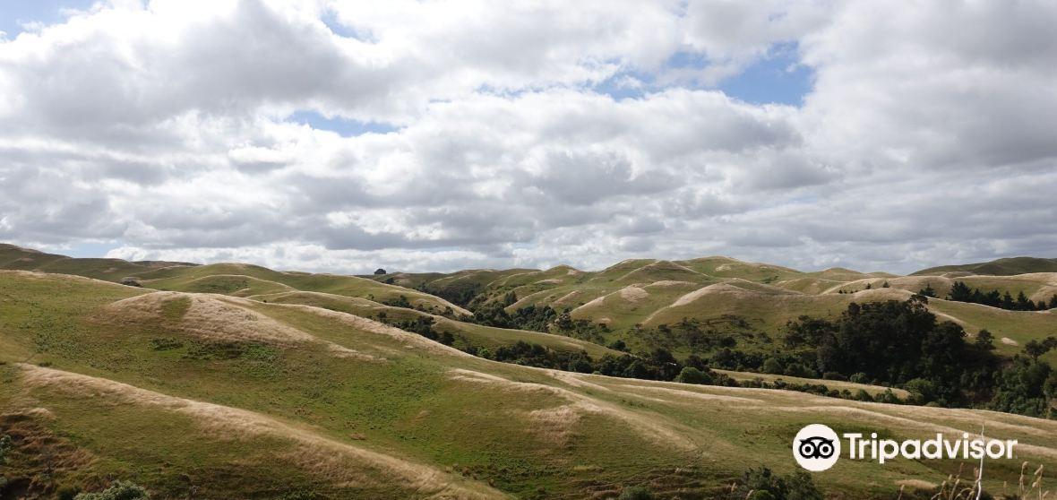 Wanganui District