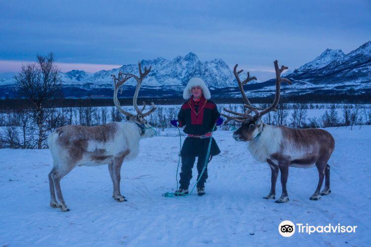 Tromso Lapland3